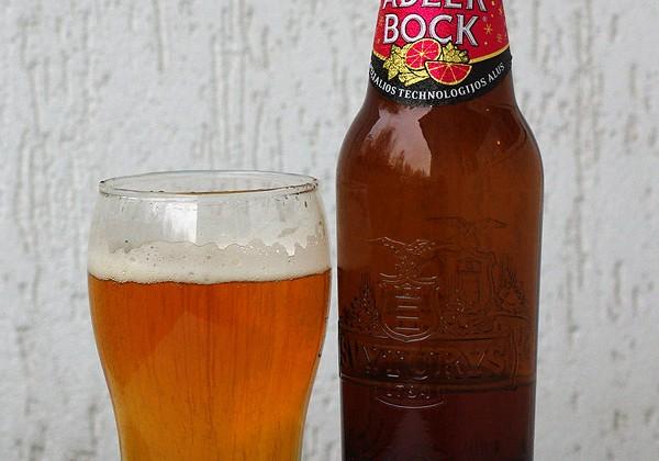 Adler Bock. Pingvi.com nuotrauka